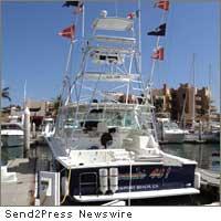 cabo marlin sport fishing